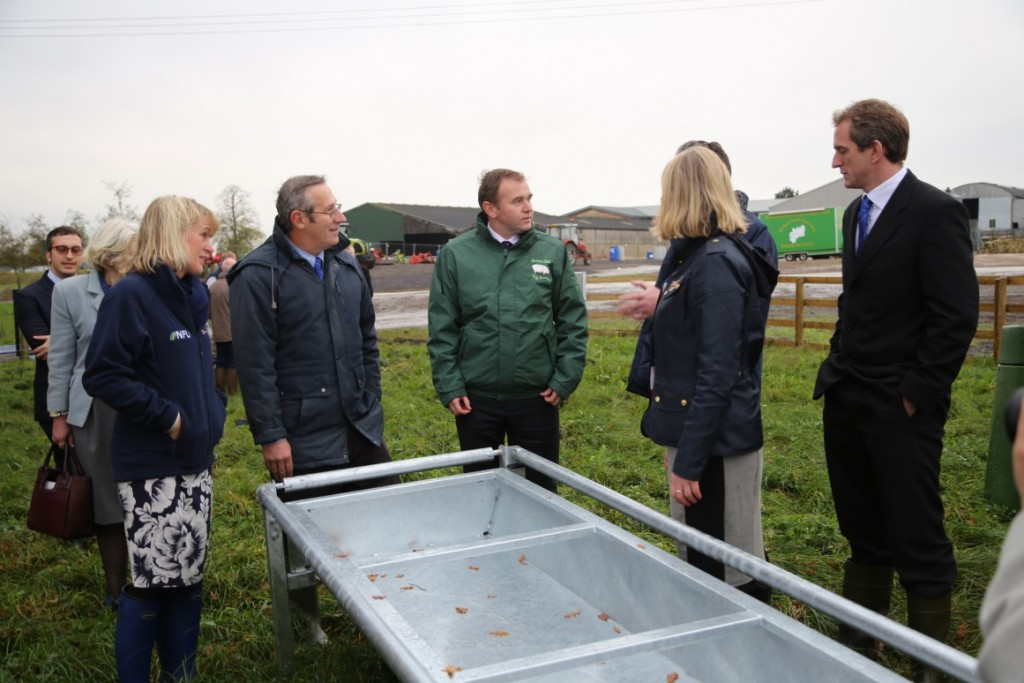 Group of people discussing troughs on a farm - TB hub